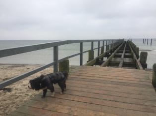 carlos-on-a-lubeck-beach